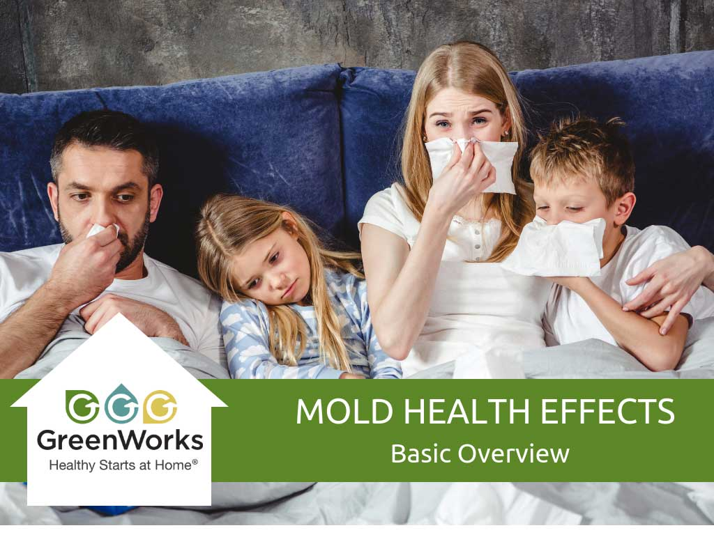 Mold Health Effects - Basic Overview