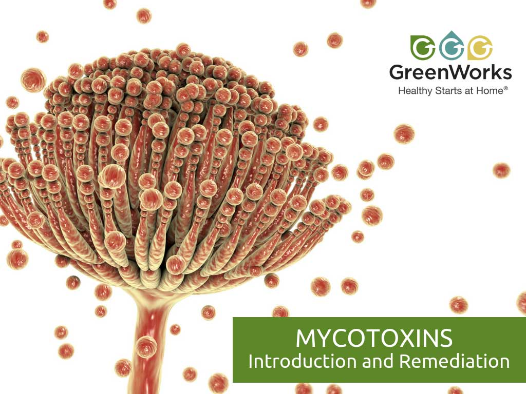 Mycotoxins - Introduction and Remediation