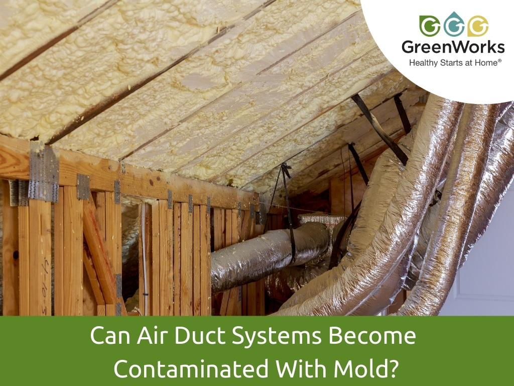 Can Air Duct Systems Become Contaminated With Mold?