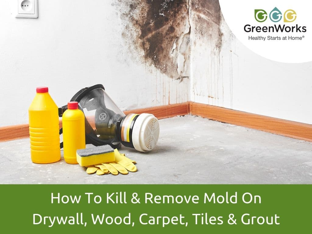 How To Kill & Remove Mold On Drywall, Wood, Carpet, Tiles & Grout