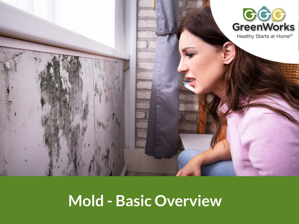 woman looking at mold on wall at home