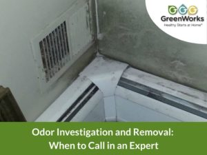 odor investigation and removal